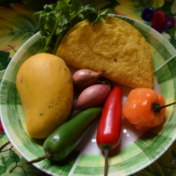 LIVE ONLINE Tex-Mex Vegan » Thursday, February 11, 2021 at 19 h